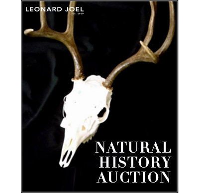 Natural History Sale,